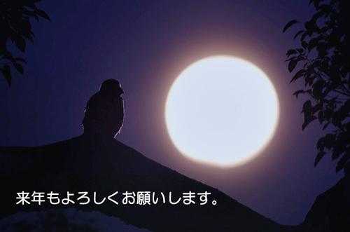 Aoba_3